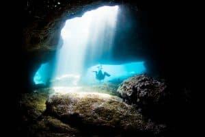 PADI Course Director - Tenerife  300A9136 1 300x200 - La mia galleria di foto sottomarine
