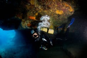 PADI Course Director - Tenerife  300A9177 2 300x200 - My Underwater Gallery