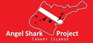 PADI Course Director - Tenerife  cropped newangelsharkproject 300x138 - cropped-newangelsharkproject