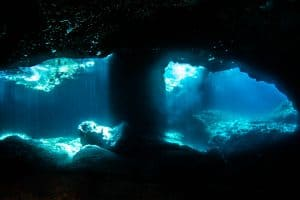 PADI Course Director - Tenerife  dosojos 1 300x200 - My Underwater Gallery