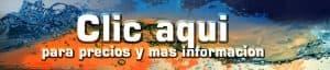 PADI Course Director - Tenerife  hiszpanski 300x64 - hiszpanski